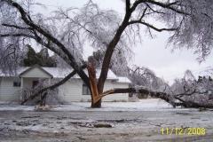 Ice Storm Dec 2007